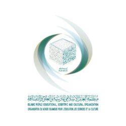 """""""التعليم"""" تنظم ورشة عمل حول تعزيز الشراكة بين القطاع الخاص والجامعات لخدمة الحج والعمرة"""